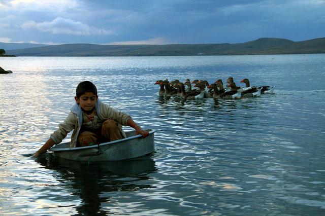 Çıldır Gölü'nden çıkan kerevitler köylünün geçim kaynağı