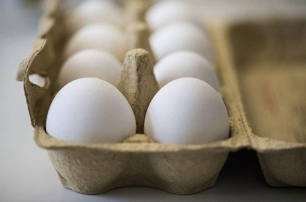 Danimarka'da 20 ton böcek ilaçlı yumurta piyasaya sürülmüş