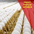 AVRUPA'NIN KORKUSU TÜRKİYE'YE YARAYACAK!