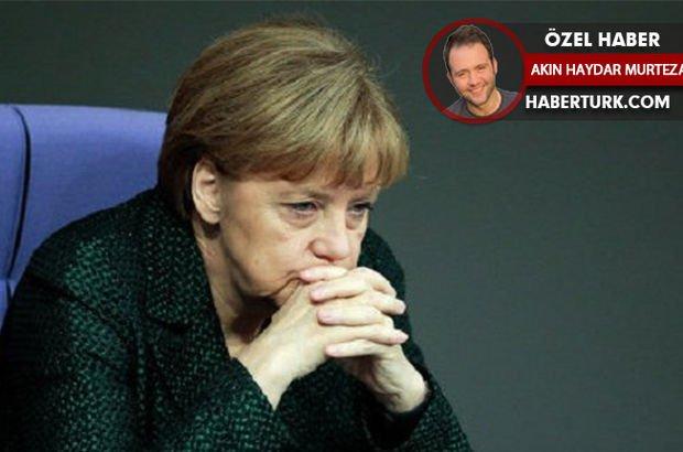 Almanya Merkel AfD