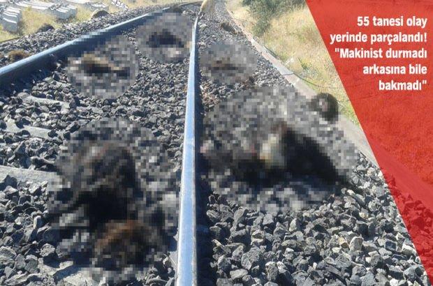Elazığ'da yük treni dehşeti!
