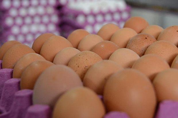 Böcek ilaçlı yumurtalara Macaristan'da da rastlandı