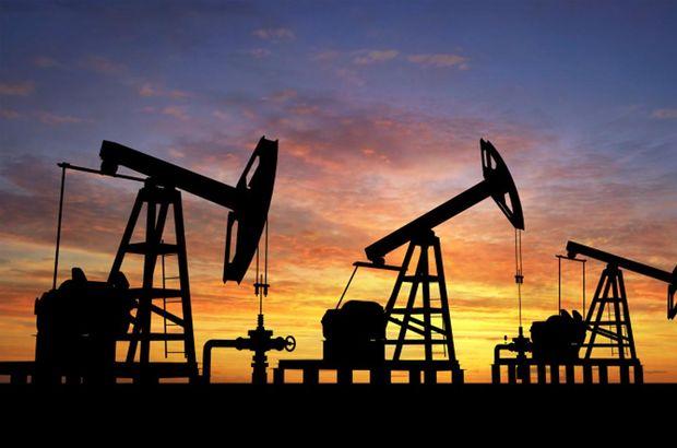 ham petrol ihracatı