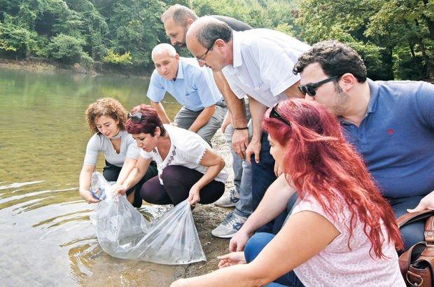 İstanbul'daki göletlere 111 bin yavru sazan bırakıldı