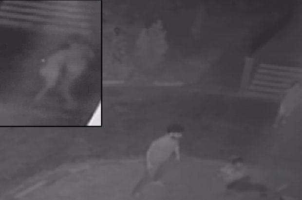 Kahramanmaraş'ta kadın öğretmene uçan tekmeli saldırı