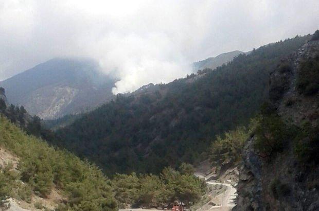 Amanoslar'da yangın PKK'lı teröristler 7 hektar makilik alanı yaktı