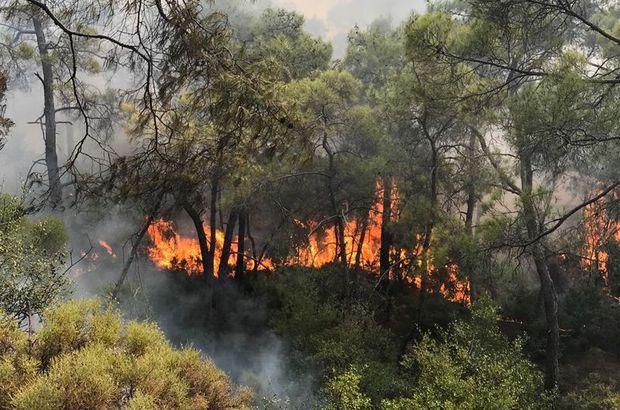 Fethiye'de yangın - Son Dakika