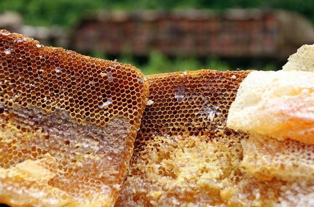 Karadeniz'den ihraç edilen balın yüzde 47'si Suudi Arabistan'a yapıldı