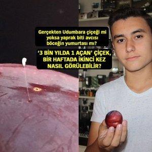 """""""EFSANE"""" BU DEFA İZNİK'TE ERİĞİN ÜZERİNDE GÖRÜNTÜLENDİ!"""