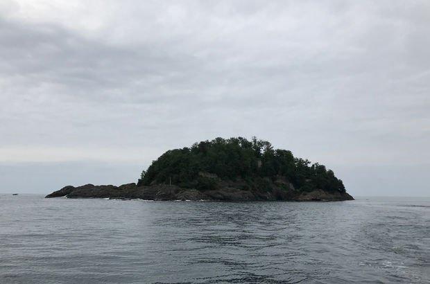 Giresun Adası'nda yürütülen son çalışmalar...