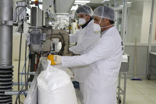 Alpullu Şeker Fabrikası üretime başladı