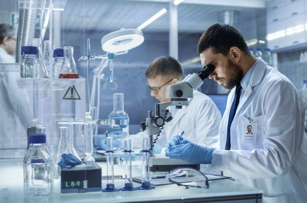 İnsan deri hücreleri