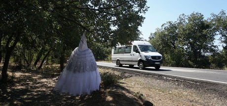 Edirne'de yol kenarında ağaca asılı gelinlik şaşırttı