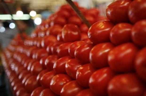 domates, domates yasağı, rusya türkiye domates