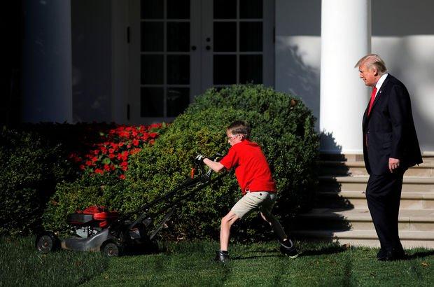 FX Beyaz Saray çim Trump