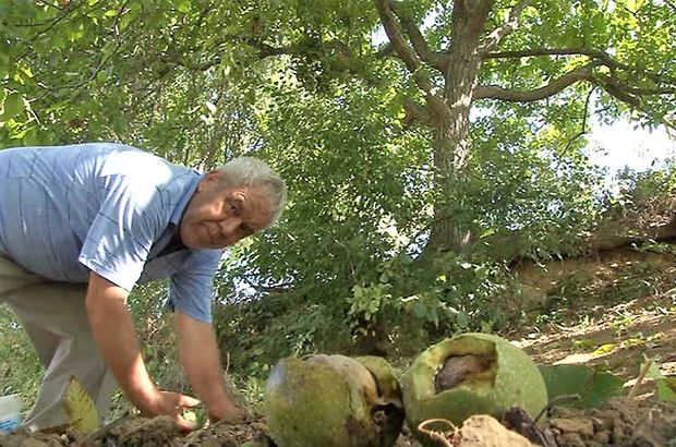 Tekirdağ'da çiftçinin hırsızla hikayesi akıllara durgunluk getirdi
