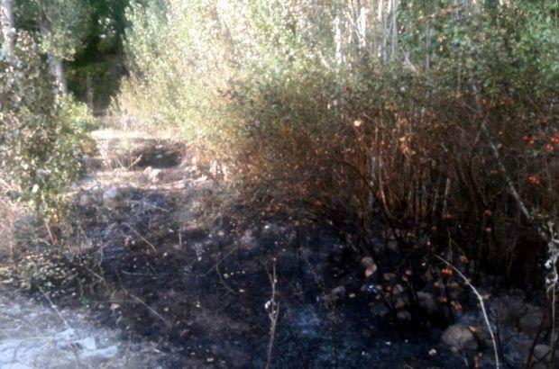 Sivas'ta otları yakmak isteyen bir kişi kendini de yaktı
