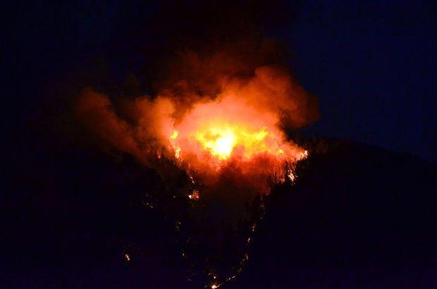 Ormanlık alanda yangın! Çok sayıda itfaiye müdahale ediyor