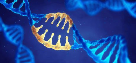 Bir milyon gen araştırılacak