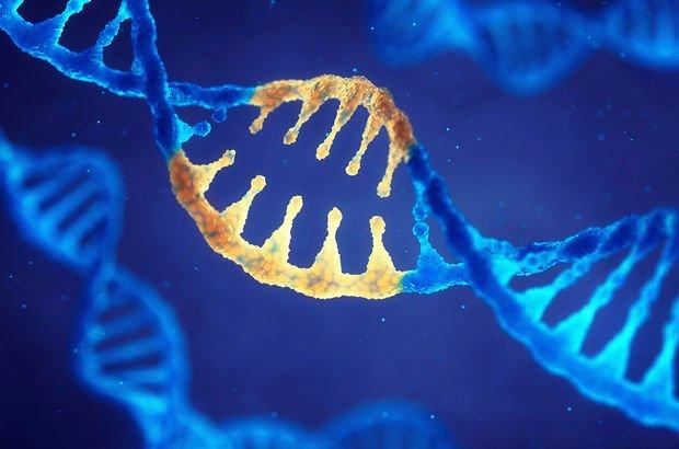 Bir milyon gen 'didik didik' araştırılacak