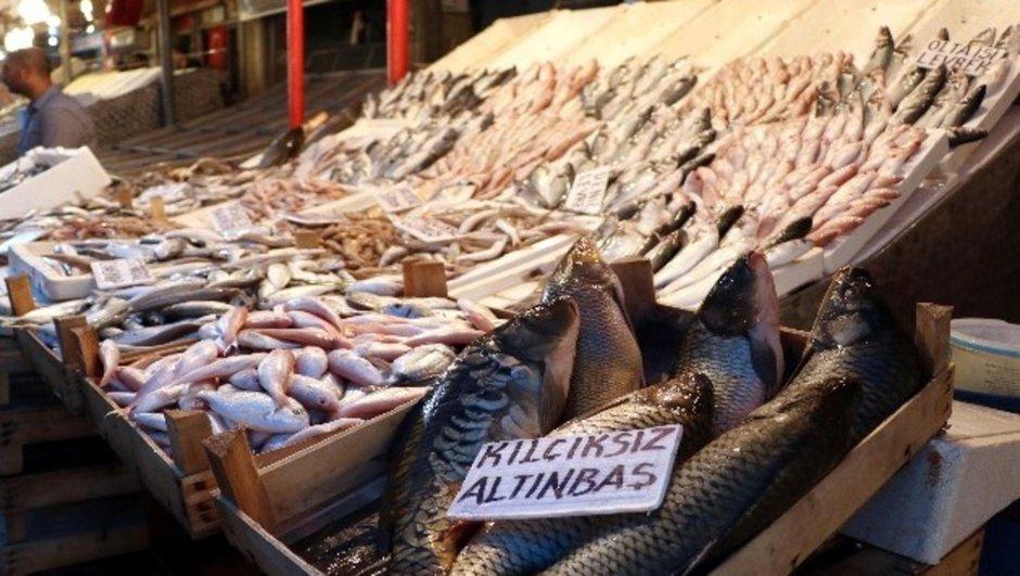 Mersin av yasağı balığın kilosu