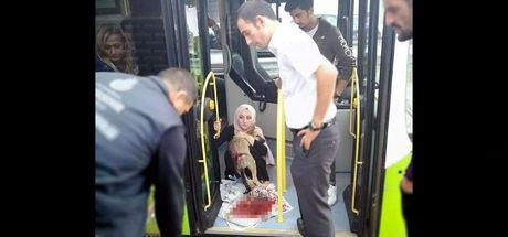 Kocaeli'de otobüs şoförü çarptığı köpeği çağırdığı görevlilere teslim etti