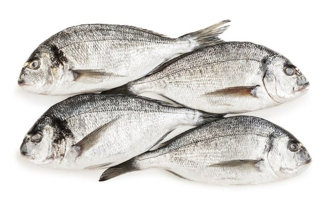Balığın faydaları