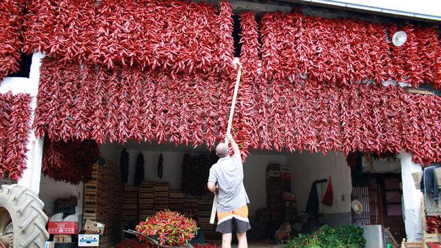 """Sırbistan'ın """"biberci köyü"""" kırmızıya büründü"""