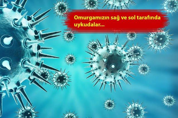 Türk Dermatoloji Derneği