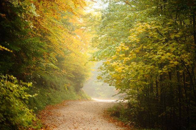 Türkiye'nin en güzel sonbahar rotaları...