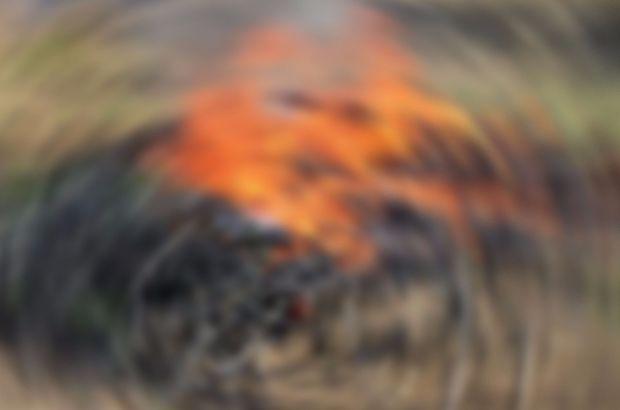 Diyarbakır'da mühimmat deposunun bulunduğu alanda yangın çıktı