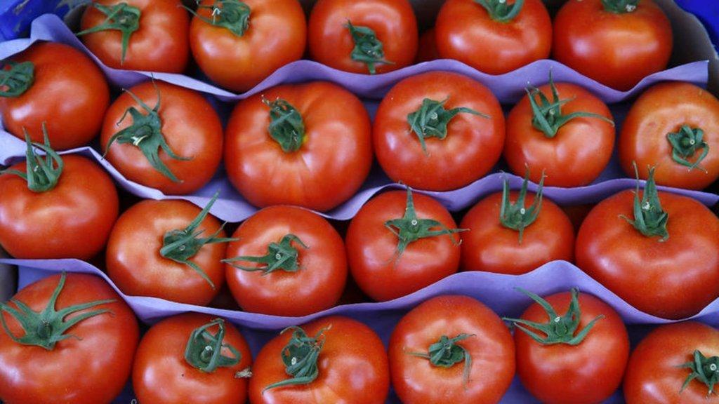 Rusya Başbakan Yardımcısı'ndan 'domates' açıklaması