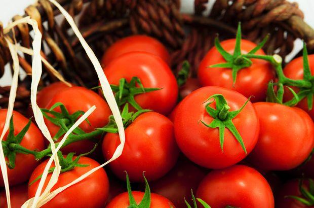 Son Dakika Rusya domates yasağını resmen kaldırdı