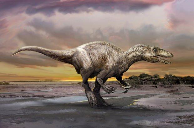 En büyük dinozor ayak izlerinden biri bulundu