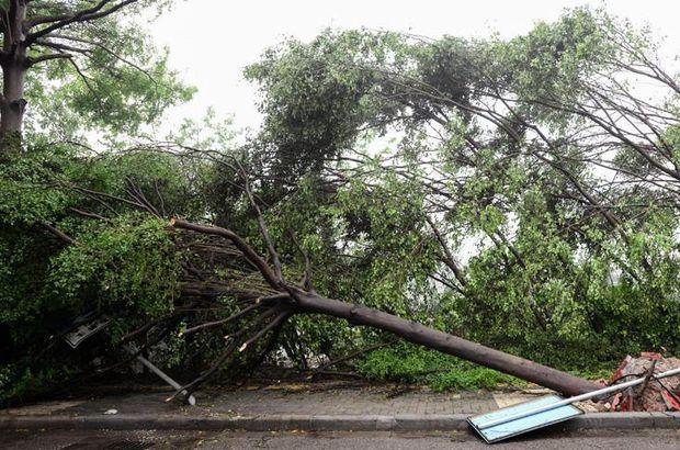 Meteoroloji'den Doğu Anadolu için fırtına uyarısı