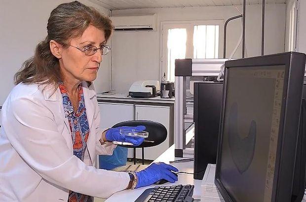 ODTÜ'den kemik kırıklarında 'kök hücre' devrimi