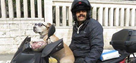 """""""Zıpkın"""" köpeğin motosiklet tutkusu"""