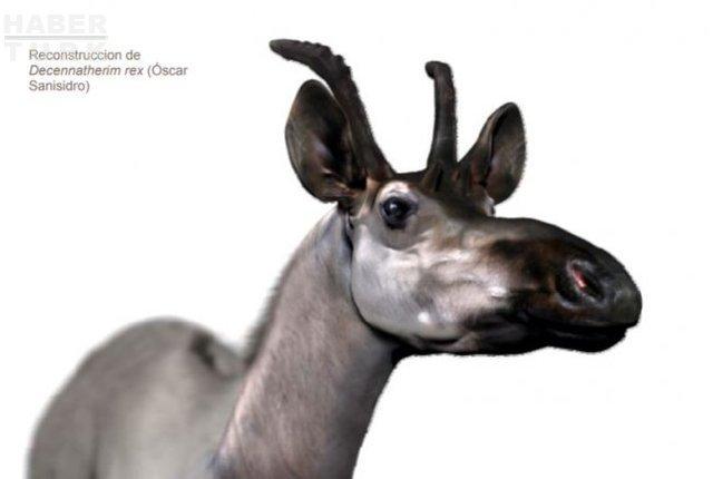 İber Yarımadasında 9 milyon yıllık zürafa fosili bulundu 79
