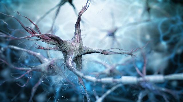 """""""Öldükten sonra 24 saat boyunca bazı genlerimiz aktif kalıyor"""""""