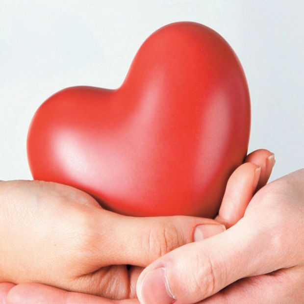 Organ Bagisi Nasil Yapilir Hangi Organ Ve Dokular Bagislanabilir