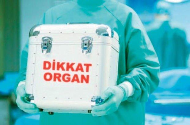 Organ nakli ile ilgili görsel sonucu