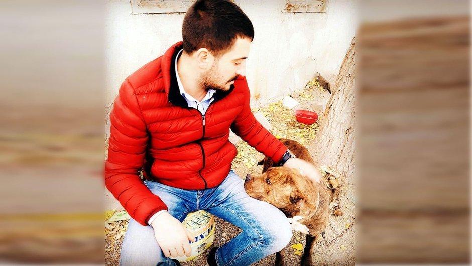 Pitbull Erzurum