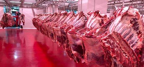 Türkiye yıllık 300 bin ton et ithal ediyor. Türkiye'nin yıllık et tüketimi ne kadar?