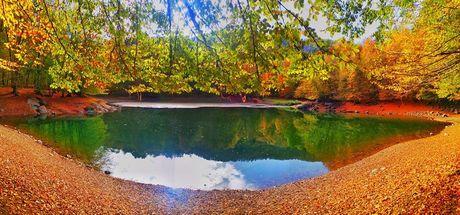 Sonbaharda Zonguldak ormanlarında renk cümbüşü