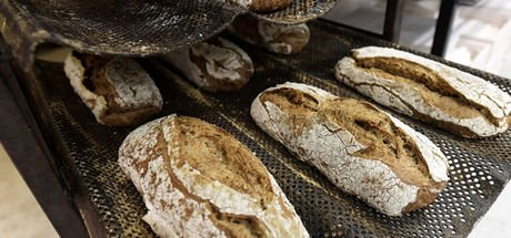 Böcekli ekmek satışa çıkıyor!