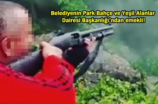 Pompalı tüfekle ateş ederek ağaçları devirdi