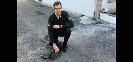 Edirne'de jandarmadan örnek hayvan sevgisi