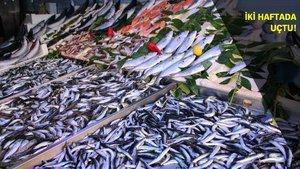 Hangi balık ne kadar?