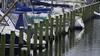 Hollanda'da balıkçılar yıllarca mafya için uyuşturucu taşıdı