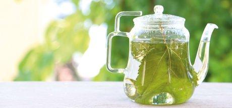Beyaz dut ve mor reyhanın faydaları nelerdir? Beyaz dut yaprağı çayı - Mor reyhan şerbeti nasıl yapılır?